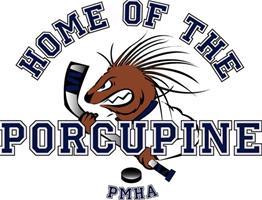 porcupine-quills